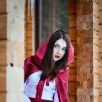 Красная шапочка :: Ирина Донкина