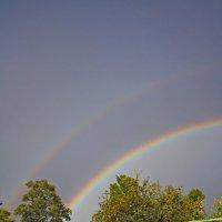 Двойная радуга :: Юлия Талалай