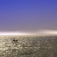 Залив :: Sergey Lexin