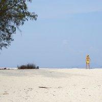 Пляжный минимализм :: Алексей Соминский