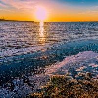 Финский залив :: Аркадий Алямовский