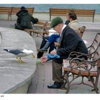 Рыбный день :: Вадим Фелик