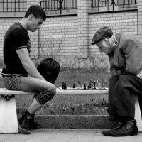 Шахматы :: Оксана Полякова
