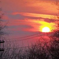 Закат.Солнце на проводах :: Валерий Викторович РОГАНОВ-АРЫССКИЙ
