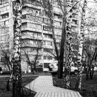 Дорога :: Сергей Черепанов