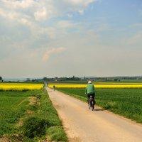 Велосипедная прогулка :: Boris Alabugin