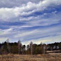 Небо ...Волнистое 2 ))) :: Маry ...