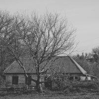 Дом :: Юлия Ярош