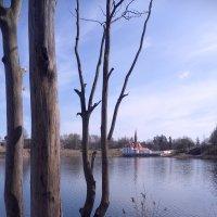 Приоратский дворец :: Валерия Яскович