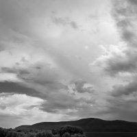 Мир реки... :: Евгений Малютин