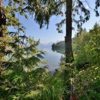 Заповедное озеро :: Viacheslav
