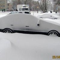 """Заблудшая"" зима. :: Валентин Деев"
