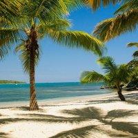 Доминикан :: Игорь Дутов