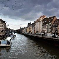 Стра́сбург,Франция :: Мария Воронина (Турик)