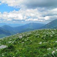 На перевале :: Нина Сигаева