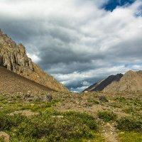 Долина реки Актру, Горный Алтай :: Дмитрий Кучеров