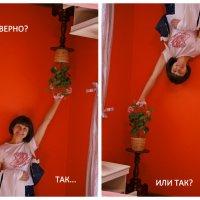 *** :: Татьяна Симонова