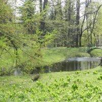 Ботанический сад :: Наталья Левина