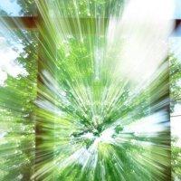 Свет в окошке... :: Павел Бутенко