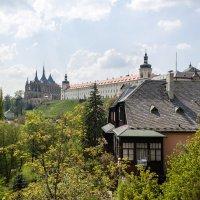Чехия. Город Кутно-гора. :: Надежда