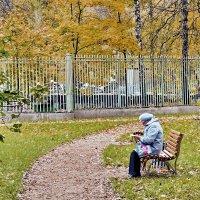 Осень жизни, как и осень года ... :: Алексей Дмитриев