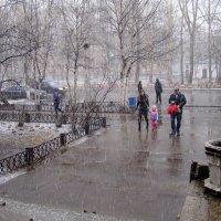 Последний снег апреля :: Елена Перевозникова