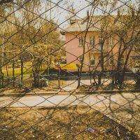 Детский сад :: Света Кондрашова