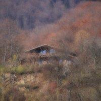 Домик в осеннем лесу :: Владимир Сарычев