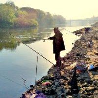 Рыбалка в центре Смоленска. :: Игорь