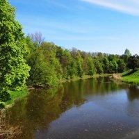 Река Лава, природа. :: Антонина Гугаева