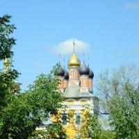из поездки в Муром :: Сергей Банков