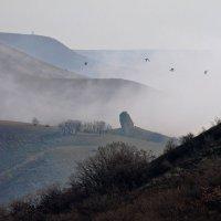 Пробивая туман :: Геннадий Валеев