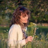 полевые цветы :: Андрей Черников
