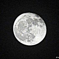 Луна :: Georg Förderer