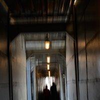 Свет и тень в тоннеле :: prostow