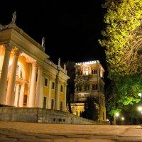 Ночь в парке :: Николай Фролов