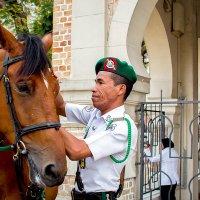 Королевская гвардия Малайзии (чем то они похожи,симпатяги) :: Николай