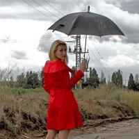 ... raine :: Roman Beim