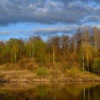 Весна :: Валерий Родиков
