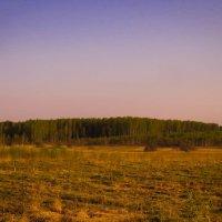 Долина утром :: Наталья Лакомова