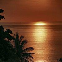 Sunset :: Tatiana Willemstein