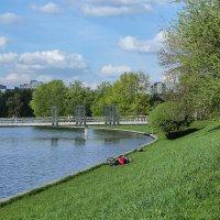 Весна на озере. :: Nonna