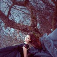 Холодная весна :: Татьяна Белецкая