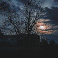 Мрак :: Захар Кузин