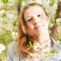 Beautiful spring :: Veronika Gorina