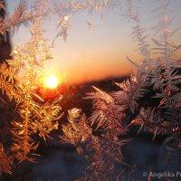 Рисунки на окне зимой :: Angelika Faustova