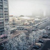Утренняя весна :: Alexander Royvels