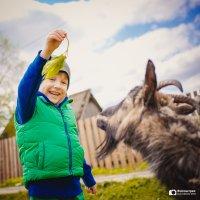 В деревне :: Михаил Кучеров