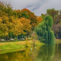моя осень :: Алексей Назаров