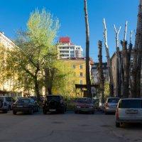 Наши дворики. :: Sergey Kuznetcov